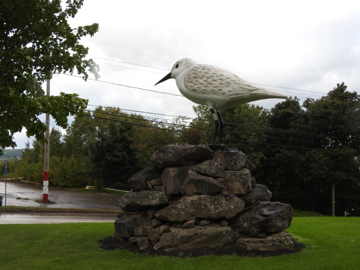 worlds-largest-sandpiper-dorchester-nb
