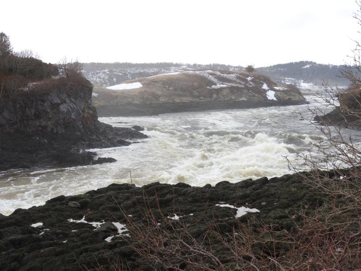 Reversing falls upper falls