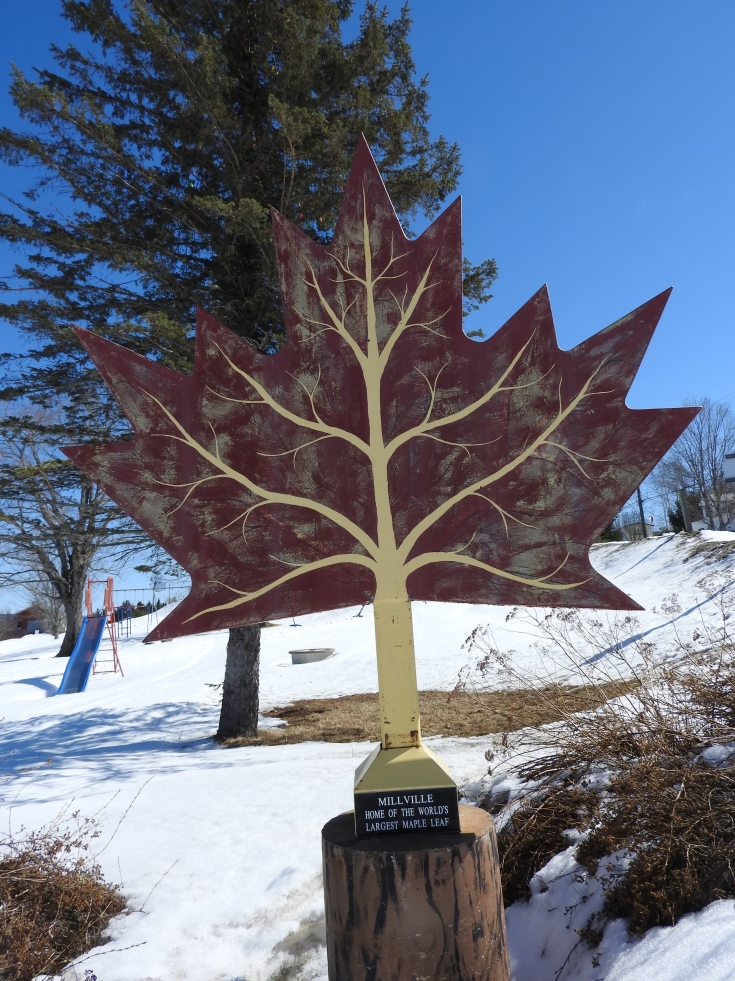 worlds Largest Maple Leaf