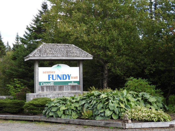 Senitier Fundy Trail