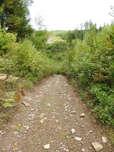 Trail along power Line to Dunbar Fall
