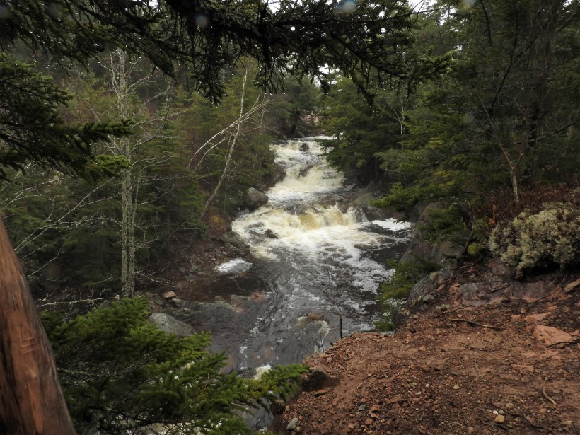 Welsford Falls spring