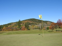 3rd Green Welsford Golf Course