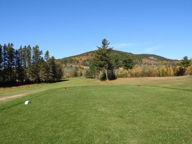 T Box at the 6th Welsford Golf Course