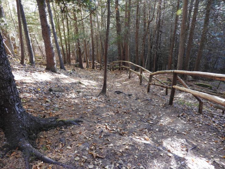 Colemen's Trail