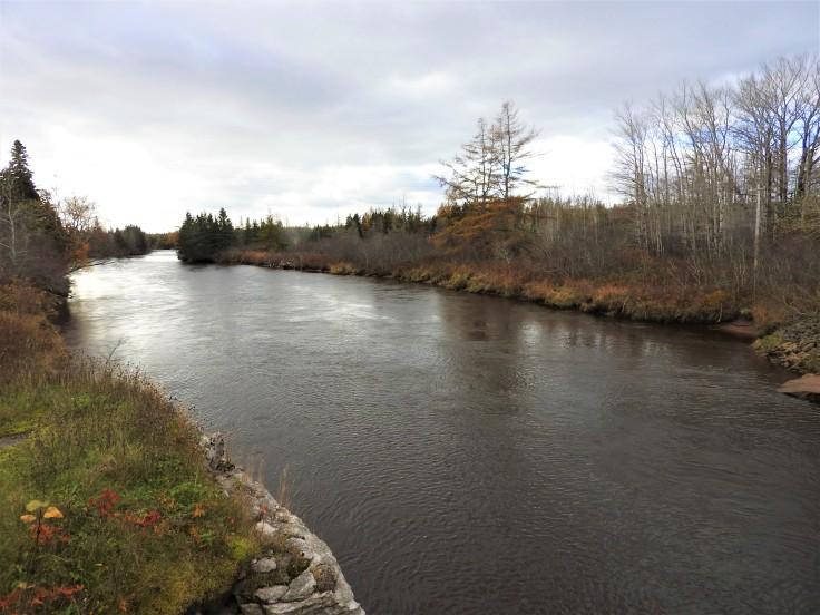 River Inhabitants
