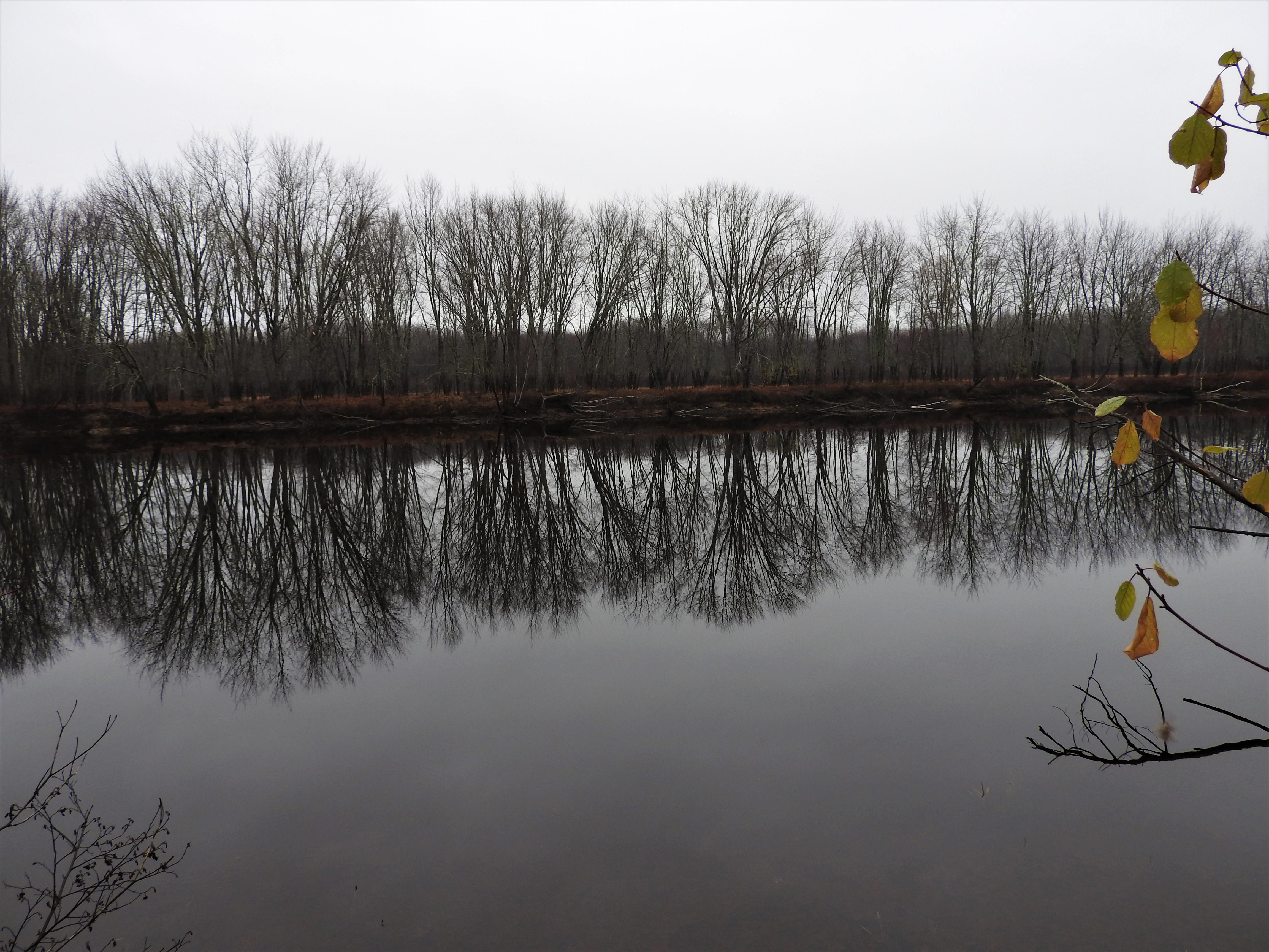Oromocto River