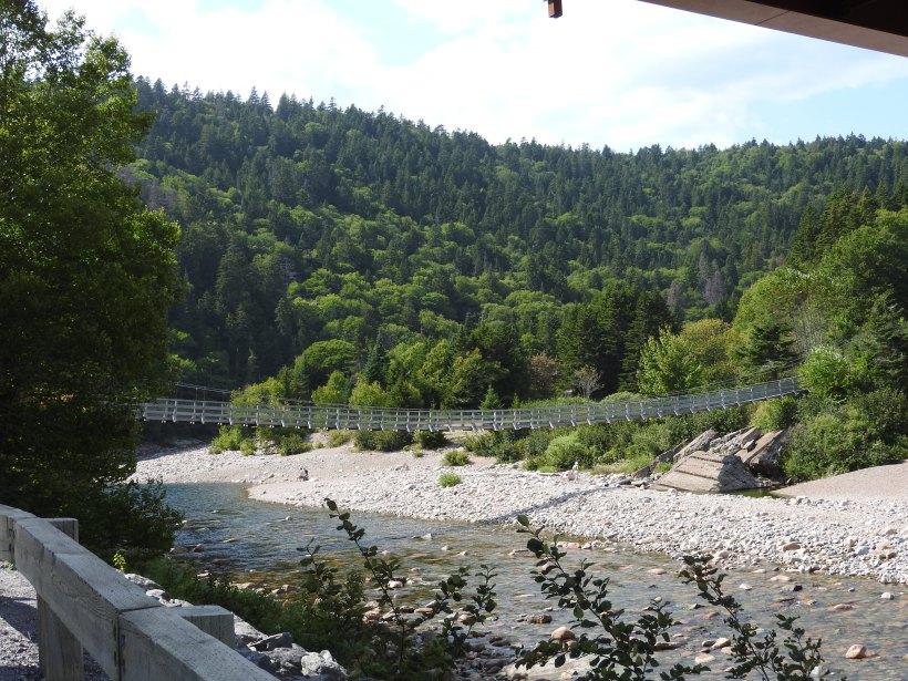 Suspension bridge over big salmon river'