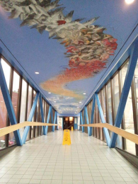 Deanna Musgrave's Mural Nest inside the pedway from Market Square.