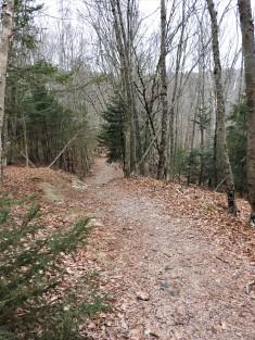 Sheldon Trail into Irvin Nature Park