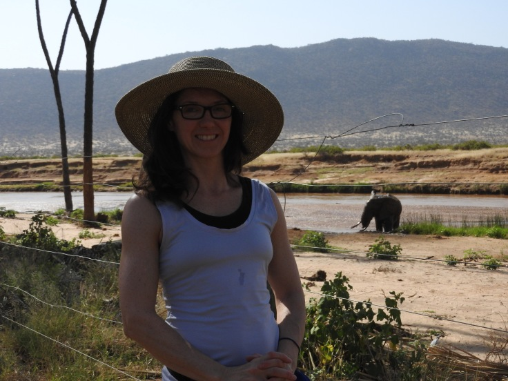 at our accommodations elephant at the river