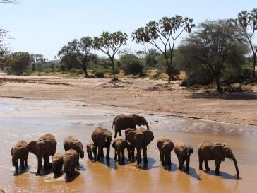 Kenya 2016 269