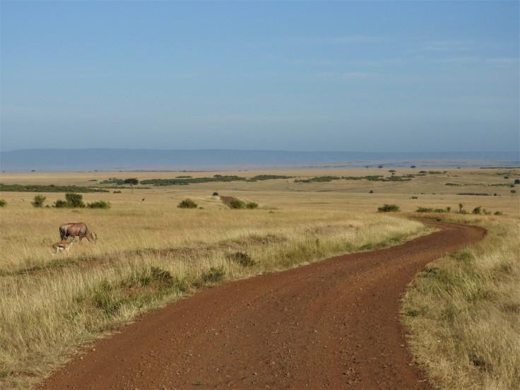 Lower Masai Mara