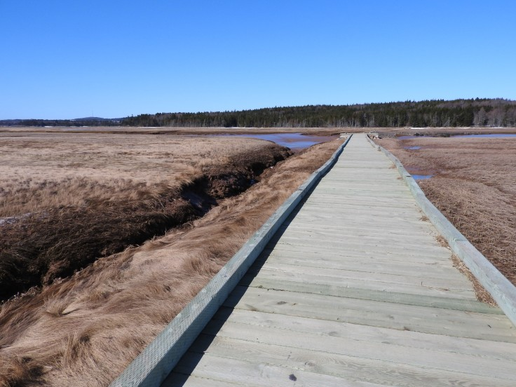 Board walk to salt Marsh flats