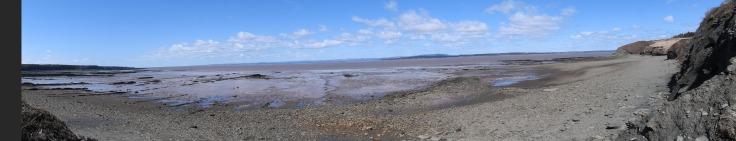 beach of Joggins fossil cliff, UNESCO world heritage site.