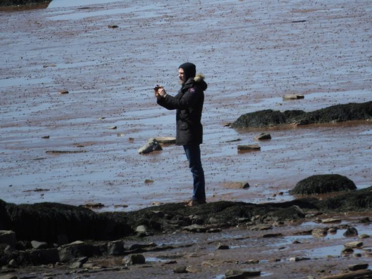 Man on Joggins beach