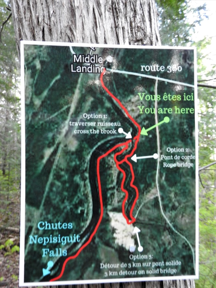 Map of trail options