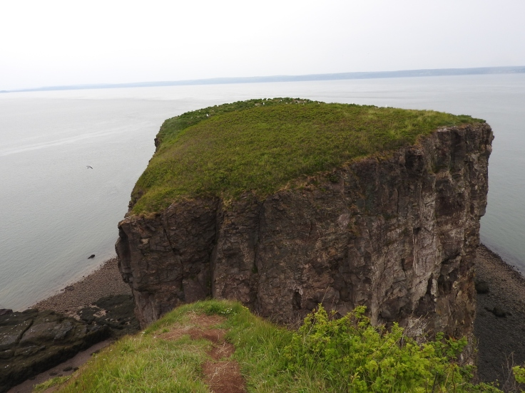 Cape Split end of trail
