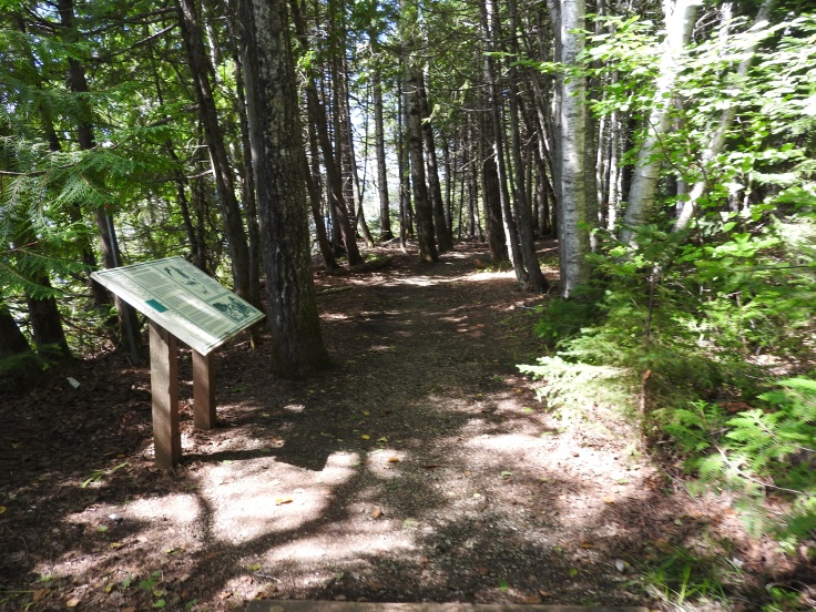3.5 km of interpretive trails are also in the park
